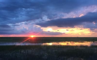 Everglades History