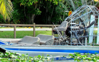 Why You Should Go Bowfishing in the Everglades