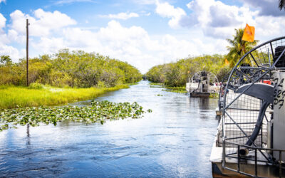 Everglades Attractions in Fort Lauderdale