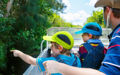 What to Expect on a Swamp Tour in Fort Lauderdale