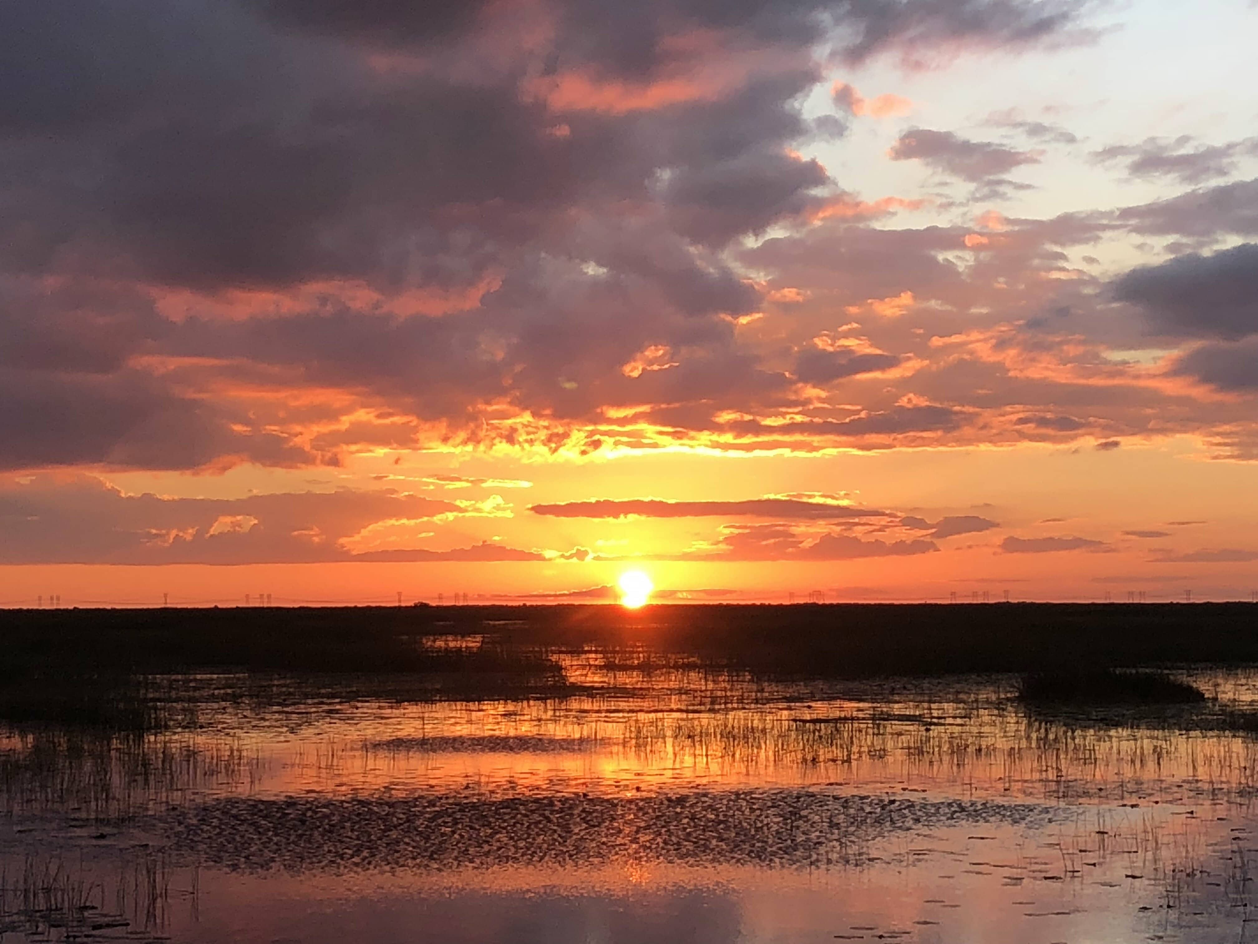 Everglades Sunset Airboat Tours in Fort Lauderdale, FL.