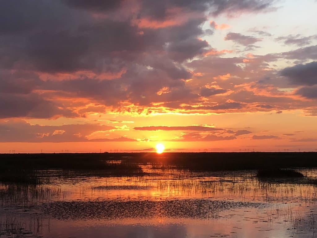 Everglades Sunset Airboat Tours in Fort Lauderdale.